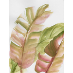 Blush Banana Leaf