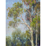 Eucalyptus Grove Left